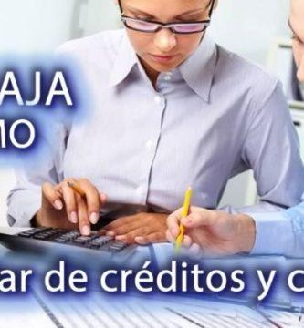 Auxiliar de créditos y cobros Santo Domingo
